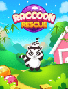Racoon rescue